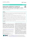 Multimodal multiphoton imaging for label-free monitoring of early gastric cancer