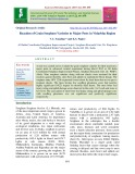 Reaction of grain sorghum varieties to major pests in Vidarbha region