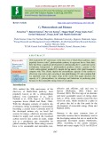 C4 photosynthesis and biomass