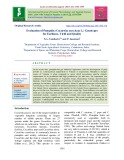 Evaluation of pumpkin (Cucurbita moschata L.) genotypes for earliness, yield and quality