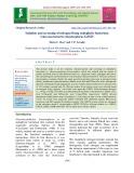 Isolation and screening of nitrogen fixing endophytic bacterium Gluconacetobacter diazotrophicus GdS25