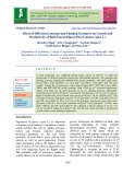 Effect of different genotype and planting geometry on growth and productivity of rabi season pigeon pea (Cajanus cajan L.)
