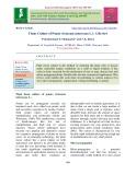 Tissue culture of potato (Solanum tuberosum L.): A review