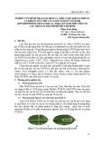 Nghiên cứu hình thái giải phẫu lá, khả năng kháng khuẩn và kháng ung thư của loài Tầm Gửi năm nhị (Dendrophthoe pentandra (l.) miq.) ký sinh trên một số cây trồng ở thành phố Hồ Chí Minh