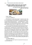 Tìm hiểu về bánh Tteok và các câu tục ngữ, thành ngữ liên quan đến bánh Tteok