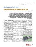 Đê giảm sóng kết cấu rỗng: Công nghệ mới bảo vệ bờ biển Đồng bằng sông Cửu Long