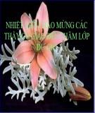 Bài giảng Ngữ văn 11: Khái quát văn học Việt Nam từ đầu thế kỉ XX đến Cách mạng tháng 8 năm 1945