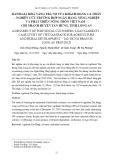 Đánh giá khả năng trả nợ của khách hàng cá nhân – nghiên cứu trường hợp Ngân hàng Nông nghiệp và phát triển nông thôn Việt Nam – Chi nhánh huyện Tân Hưng, tỉnh Long An