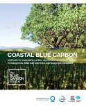 Coastal blue carbon methods for assessing carbon stocks and emissions factors in mangroves, tidal salt marshes, and seagrass meadows