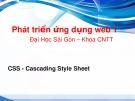 Bài giảng Phát triển ứng dụng web 1: CSS - ĐH Sài Gòn