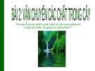 Bài giảng Sinh học 11 - Bài 2: Vận chuyển các chất trong cây (Hồ Thị Liên)