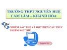 Bài giảng Sinh học 12 - Bài 5: Nhiễm sắc thể và đột biến cấu trúc nhiễm sắc thể (Nguyễn Tri)