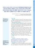 Vòng nâng cổ tử cung so với progesterone đặt âm đạo trong phòng ngừa sinh non ở thai phụ mang song thai có chiều dài cổ tử cung < 38 mm: Một thử nghiệm ngẫu nhiên có nhóm chứng