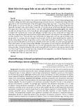 Bệnh thần kinh ngoại biên và các yếu tố liên quan ở bệnh nhân hóa trị