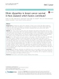 Ethnic disparities in breast cancer survival in New Zealand: Which factors contribute
