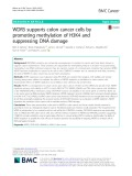 WDR5 supports colon cancer cells by promoting methylation of H3K4 and suppressing DNA damage