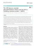 The UDP-glucose ceramide glycosyltransferase (UGCG) and the link to multidrug resistance protein 1 (MDR1)