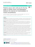 Putative cancer stem cells may be the key target to inhibit cancer cell repopulation between the intervals of chemoradiation in murine mesothelioma
