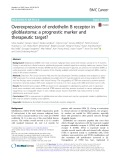 Overexpression of endothelin B receptor in glioblastoma: A prognostic marker and therapeutic target