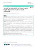 The role of vimentin in the tumor marker Nup88-dependent multinucleated phenotype