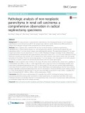 Pathologic analysis of non-neoplastic parenchyma in renal cell carcinoma: A comprehensive observation in radical nephrectomy specimens