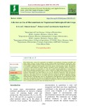 A review on use of micronutrients in tropical and subtropical fruit crops
