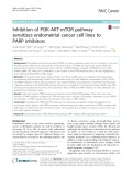 Inhibition of PI3K-AKT-mTOR pathway sensitizes endometrial cancer cell lines to PARP inhibitors