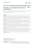 Calretinin as a blood-based biomarker for mesothelioma