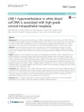 LINE-1 hypermethylation in white blood cell DNA is associated with high-grade cervical intraepithelial neoplasia