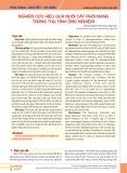 Nghiên cứu hiệu quả nuôi cấy phôi nang trong thụ tinh ống nghiệm