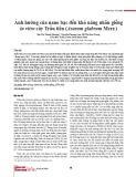 Ảnh hưởng của nano bạc đến khả năng nhân giống in vitro cây Trầu tiên (Asarum glabrum Merr.)
