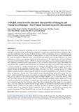 Nghiên cứu chi tiết cấu trúc khu vực quần đảo Hoàng Sa và Trường Sa - Biển Đông Việt Nam trên cơ sở phân tích tài liệu trọng lực