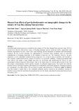Nghiên cứu ảnh hưởng của chế độ thủy - thạch động lực đến biến động địa hình vùng cửa sông Cửa Đại, tỉnh Quảng Nam