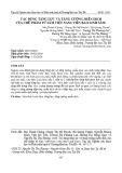 Tác dụng tăng lực và tăng cường miễn dịch của chế phẩm từ sâm Việt Nam (Viên bảo linh sâm)