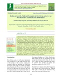 Studies on growth, yield and economics of rice (Oryza sativa. L) var. Pusa basmati-1 as influenced by biofertilizers