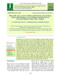 Effect of fly ash as a source of silicon and potassium on the incidence of brown plant hopper, green leaf hopper and stem borer in rice under different abiotic stress condition