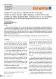 Nghiên cứu tích hợp mô hình mô phỏng dòng chảy trong vỉa chứa và lòng giếng nhằm tối ưu hóa dự báo sản lượng các giếng khai thác khí - condensate của mỏ Hải Thạch
