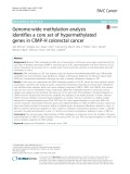Genome-wide methylation analysis identifies a core set of hypermethylated genes in CIMP-H colorectal cancer