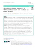Identifying predictive biomarkers of CIMAvaxEGF success in non–small cell lung cancer patients