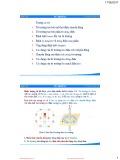 Bài giảng Vật lý 1: Từ trường