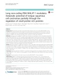 Long non-coding RNA MALAT-1 modulates metastatic potential of tongue squamous cell carcinomas partially through the regulation of small proline rich proteins