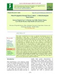 Plant propagation through tissue culture – A biotechnological intervention