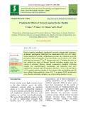 Prophylactic effects of turmeric against bovine mastitis