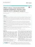 Silibinin induces mitochondrial NOX4- mediated endoplasmic reticulum stress response and its subsequent apoptosis