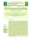 Effect of conservation agricultural practices on candidate herbicides persistence under maize-sunflower system in tropical Indian conditions