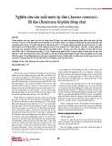 Nghiên cứu sản xuất nước ép dứa (Ananas comosus) - Bí đao (Benincasa hispida) đóng chai