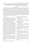 Nghiên cứu ảnh hưởng của vải không dệt (Passlite) đến năng suất, chất lượng rau xà lách và cải canh tại Gia Lâm - Hà Nội