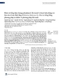 Khảo sát tổng hàm lượng polyphenol, flavonoid và hoạt tính chống oxi hóa của rể cây đinh lăng (Polyscias fruticosa (L.) Harm) trồng bằng phương pháp tự nhiên và phương pháp khí canh