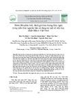 Bước đầu phân tích, đánh giá hàm lượng thủy ngân trong mẫu than nguyên liệu sử dụng tại một số nhà máy nhiệt điện ở Việt Nam