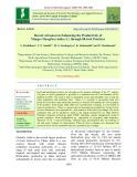 Recent advances in enhancing the productivity of mango (Mangifera indica L.) through Hi-tech practices